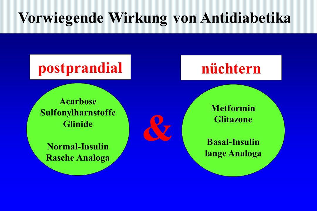 Vorwiegende Wirkung von Antidiabetika Acarbose Sulfonylharnstoffe Glinide Normal-Insulin Rasche Analoga & Metformin Glitazone Basal-Insulin lange Analoga postprandial nüchtern