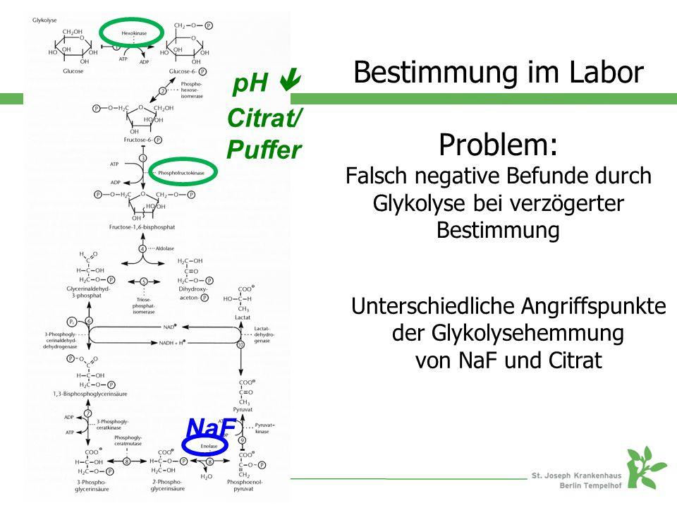 NaF Citrat/ Puffer pH  Bestimmung im Labor Problem: Falsch negative Befunde durch Glykolyse bei verzögerter Bestimmung Unterschiedliche Angriffspunkte der Glykolysehemmung von NaF und Citrat