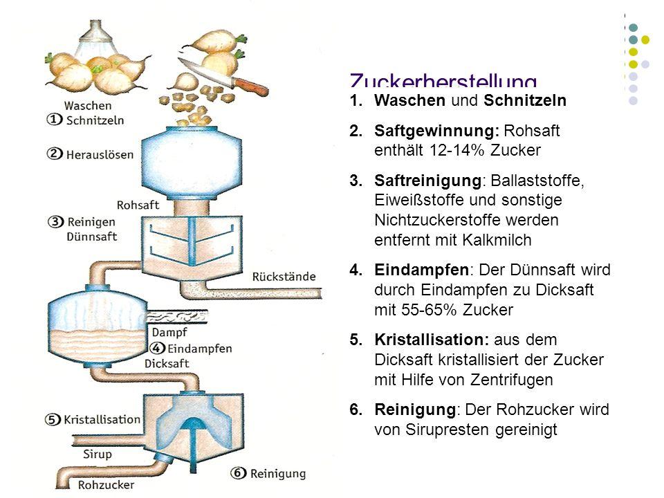 Zuckerherstellung 1.Waschen und Schnitzeln 2.Saftgewinnung: Rohsaft enthält 12-14% Zucker 3.Saftreinigung: Ballaststoffe, Eiweißstoffe und sonstige Ni