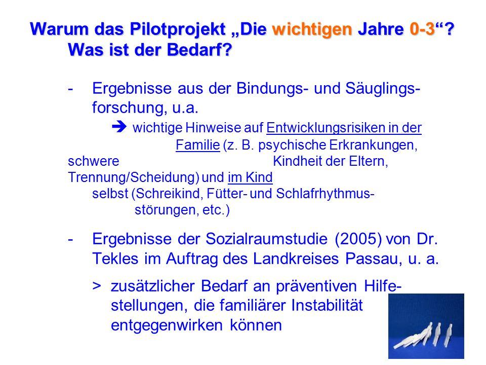 """-Ergänzende Anregungen der Arbeitsgemeinschaft """"Kirchliche Jugendhilfe in Stadt und Landkreis Passau zur Jugendhilfeplanung (06.02.2006) >vermehrte Einbeziehung des Vorschul- alters, insbesondere der Altersspanne 0-3, bei der Jugendhilfeplanung des Landkreises und der Stadt >Frühe Förderung und Stärkung der Beziehungs- und Erziehungskompetenzen von Eltern als wirksame Prävention für Vernachlässigung und Kindeswohl- gefährdung"""