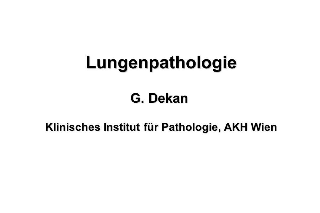 Lungenpathologie G. Dekan Klinisches Institut für Pathologie, AKH Wien