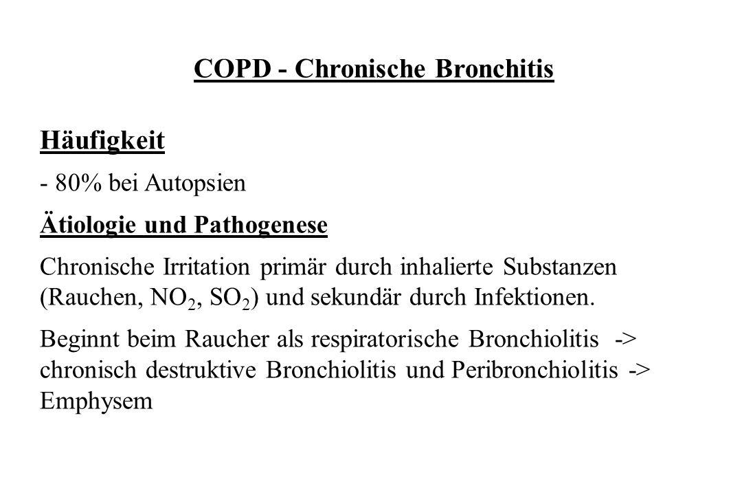 COPD - Chronische Bronchitis Häufigkeit - 80% bei Autopsien Ätiologie und Pathogenese Chronische Irritation primär durch inhalierte Substanzen (Rauche