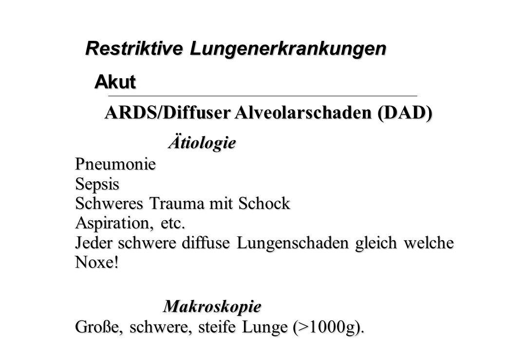 Restriktive Lungenerkrankungen Akut ARDS/Diffuser Alveolarschaden (DAD) ÄtiologiePneumonieSepsis Schweres Trauma mit Schock Aspiration, etc. Jeder sch