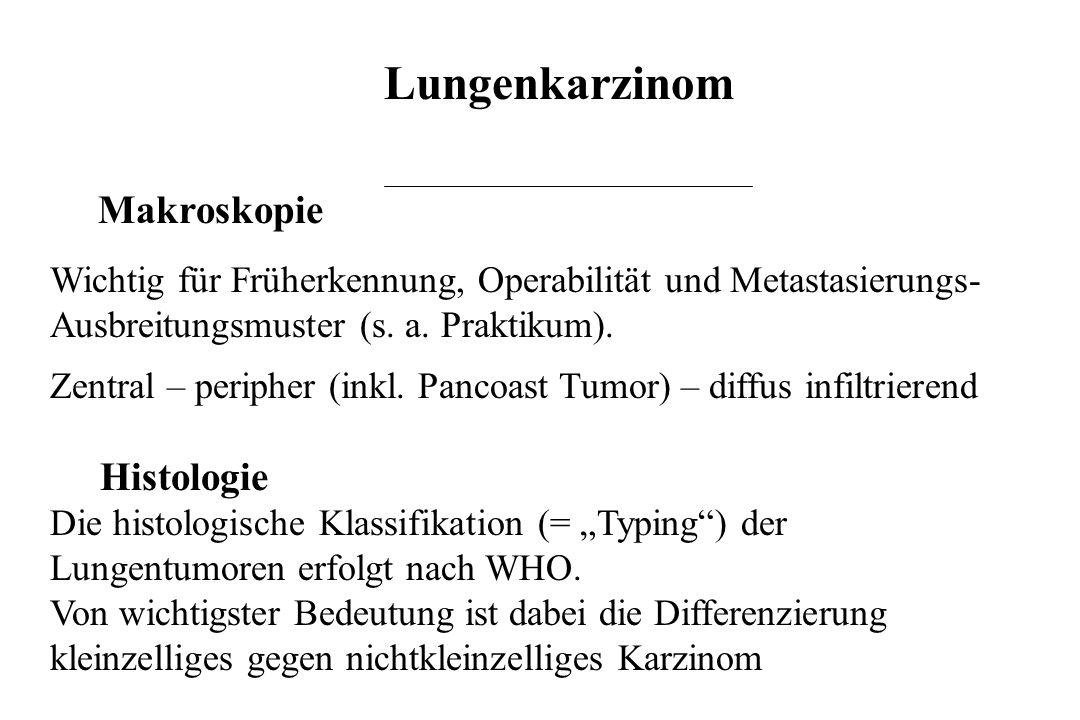 Lungenkarzinom Makroskopie Wichtig für Früherkennung, Operabilität und Metastasierungs- Ausbreitungsmuster (s. a. Praktikum). Zentral – peripher (inkl