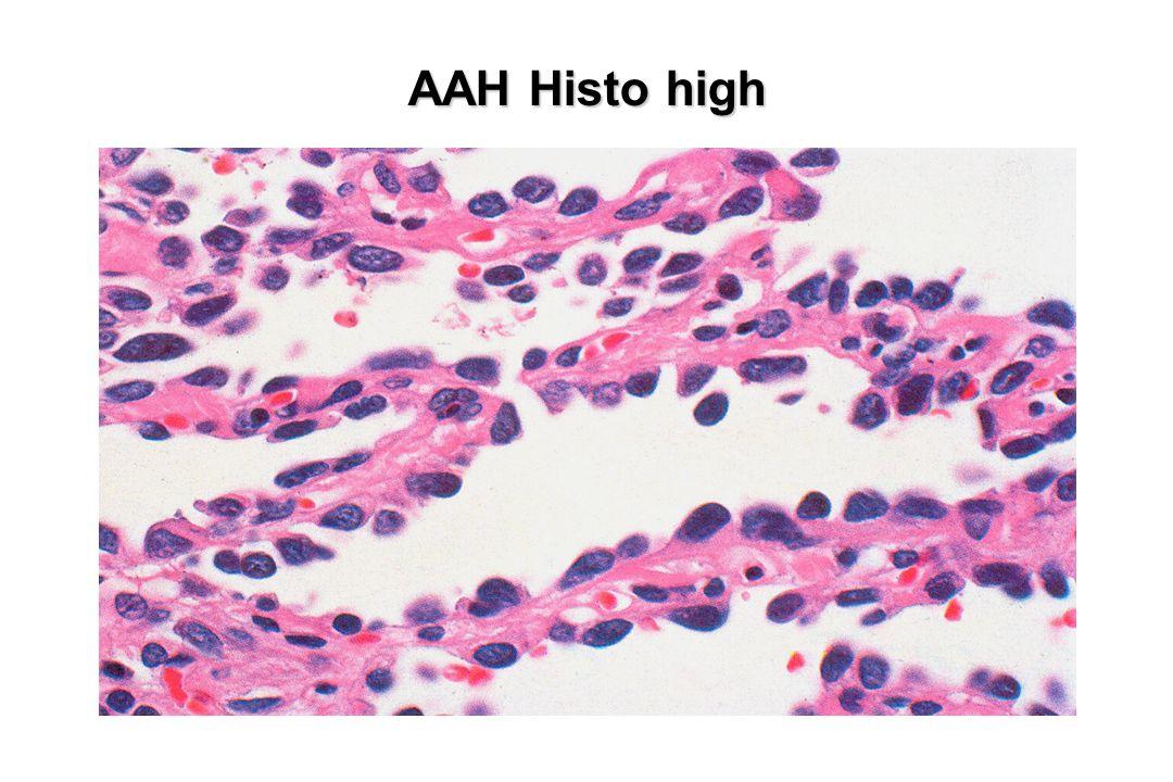 AAH Histo high