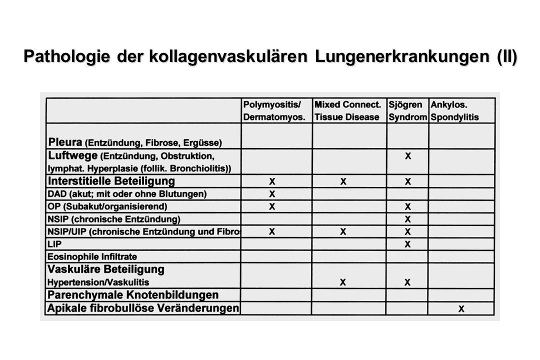 Pathologie der kollagenvaskulären Lungenerkrankungen (II)