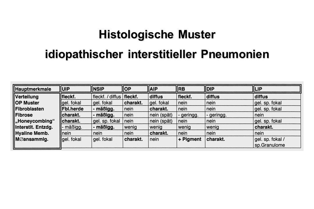 Histologische Muster idiopathischer interstitieller Pneumonien