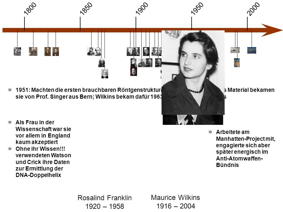 1900 1850 1950 20001800 Rosalind Franklin 1920 – 1958 Maurice Wilkins 1916 – 2004  Als Frau in der Wissenschaft war sie vor allem in England kaum akzeptiert  Ohne ihr Wissen!!.
