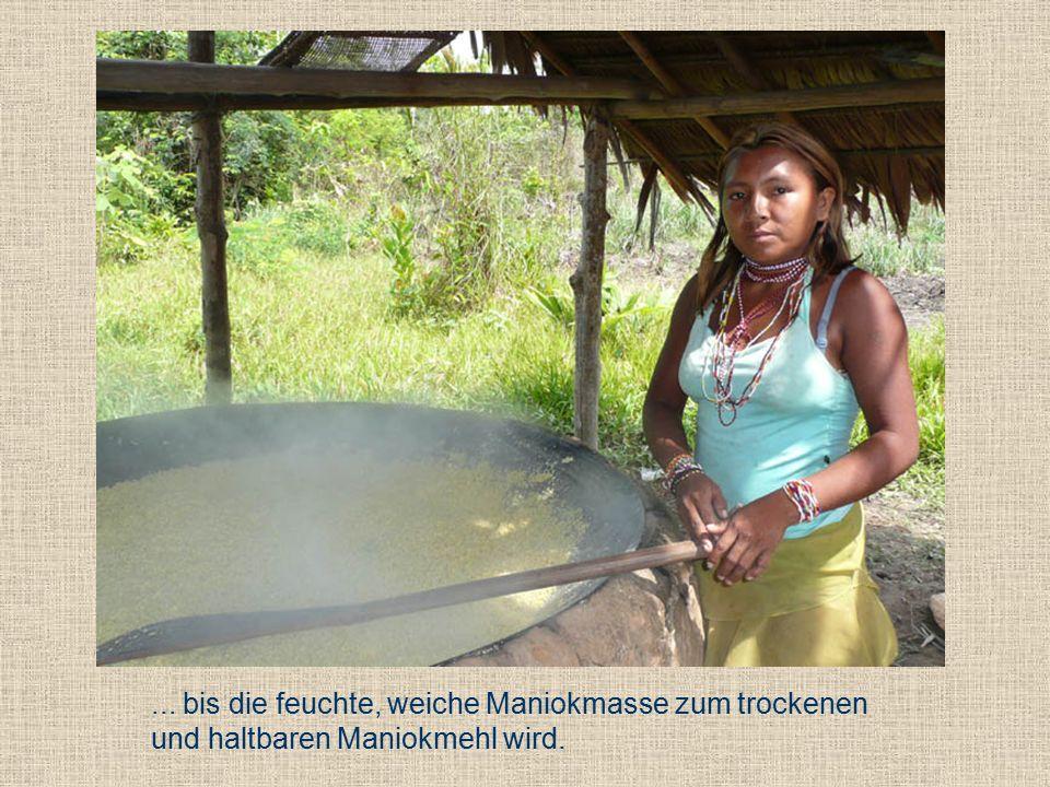 ... bis die feuchte, weiche Maniokmasse zum trockenen und haltbaren Maniokmehl wird.