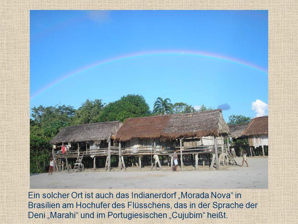 """Ein solcher Ort ist auch das Indianerdorf """"Morada Nova in Brasilien am Hochufer des Flüsschens, das in der Sprache der Deni """"Marahi und im Portugiesischen """"Cujubim heißt."""