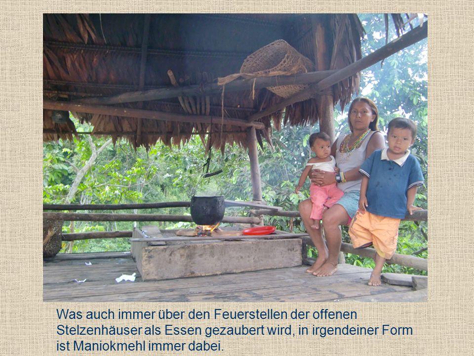 """Eine überdachte """"Maniokküche gehört zu jeder Häusergruppe eines Familienverbandes."""