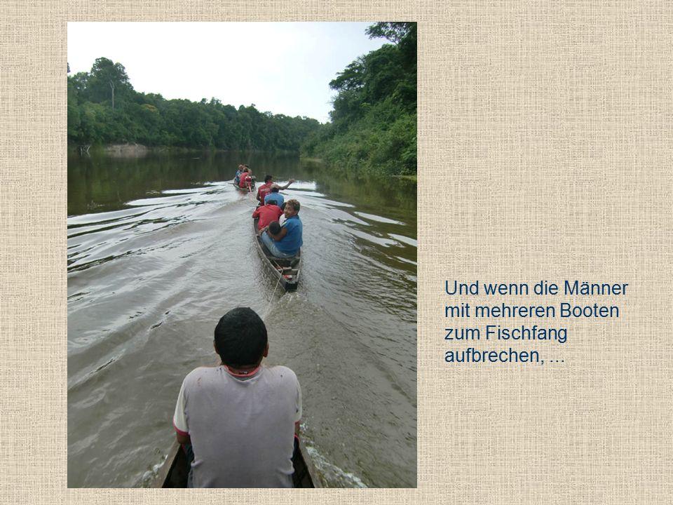 Und wenn die Männer mit mehreren Booten zum Fischfang aufbrechen,...