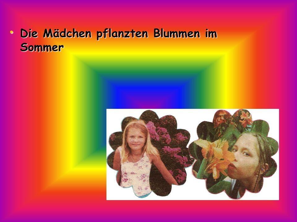 Die Mädchen pflanzten Blummen im Sommer Die Mädchen pflanzten Blummen im Sommer