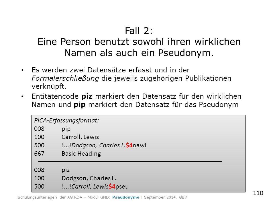 Es werden zwei Datensätze erfasst und in der Formalerschließung die jeweils zugehörigen Publikationen verknüpft. Entitätencode piz markiert den Datens