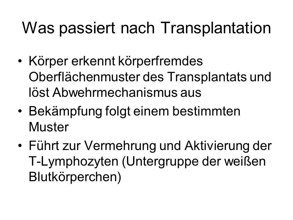 Was passiert nach Transplantation Körper erkennt körperfremdes Oberflächenmuster des Transplantats und löst Abwehrmechanismus aus Bekämpfung folgt einem bestimmten Muster Führt zur Vermehrung und Aktivierung der T-Lymphozyten (Untergruppe der weißen Blutkörperchen)