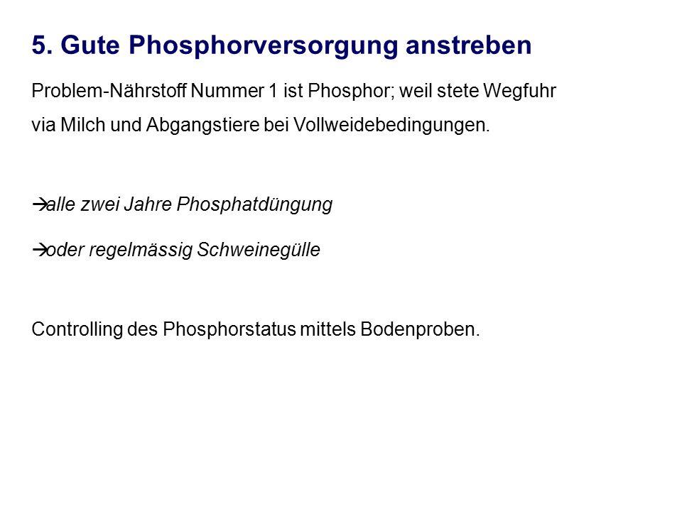 5. Gute Phosphorversorgung anstreben Problem-Nährstoff Nummer 1 ist Phosphor; weil stete Wegfuhr via Milch und Abgangstiere bei Vollweidebedingungen.