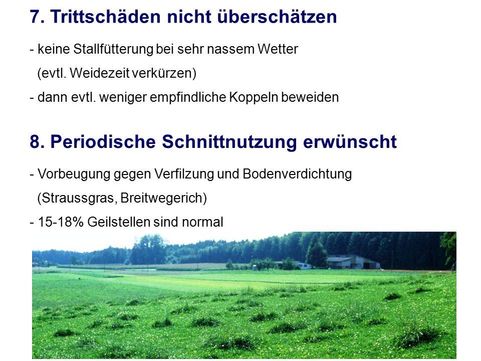 7. Trittschäden nicht überschätzen - keine Stallfütterung bei sehr nassem Wetter (evtl. Weidezeit verkürzen) - dann evtl. weniger empfindliche Koppeln