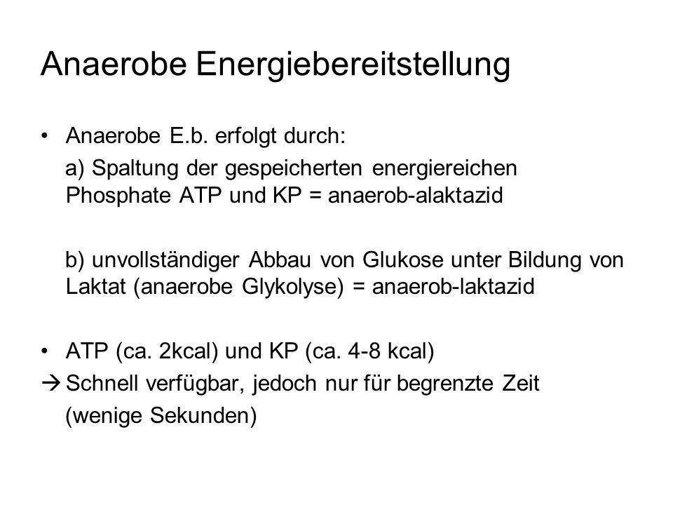 Anaerobe Energiebereitstellung Anaerobe E.b.