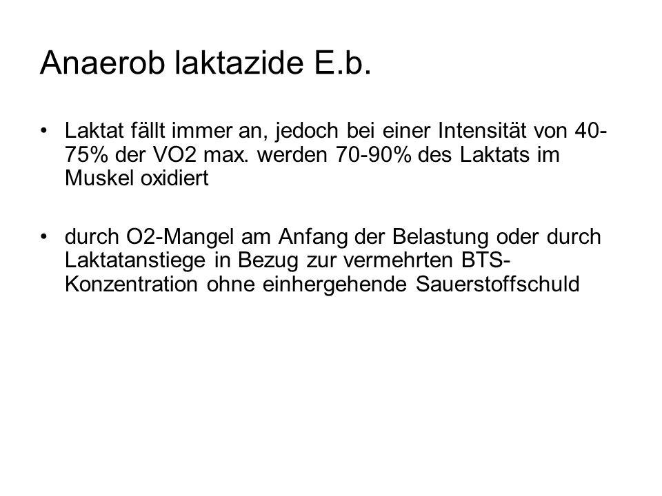 Anaerob laktazide E.b. Laktat fällt immer an, jedoch bei einer Intensität von 40- 75% der VO2 max.