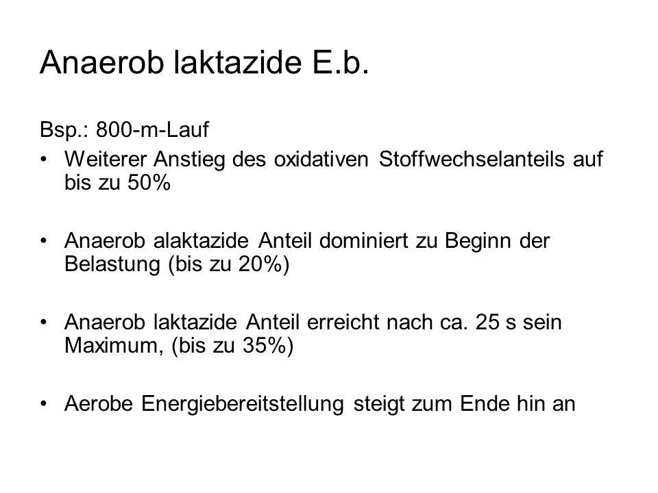 Anaerob laktazide E.b.
