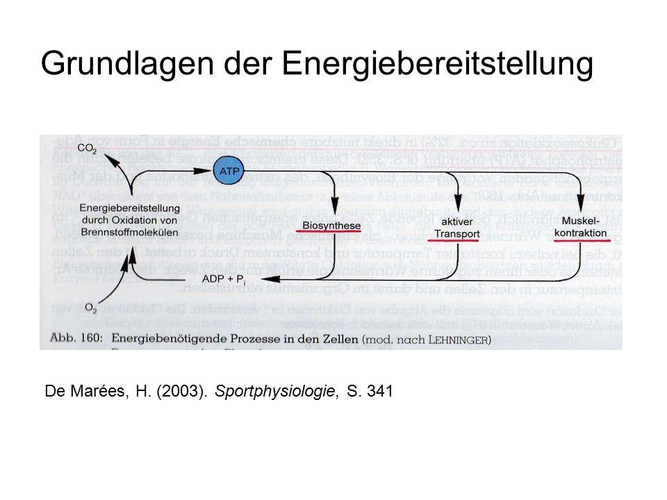 Grundlagen der Energiebereitstellung Resynthese von ATP durch schrittweise Oxidation der Nährstoffe: – Zucker (Traubenzucker/ Glukose) – Fette (Fettsäuren) – gering: Eiweiße (Aminosäuren) Endprodukte: Harnstoff, Laktat, CO2, H2O und Wärme