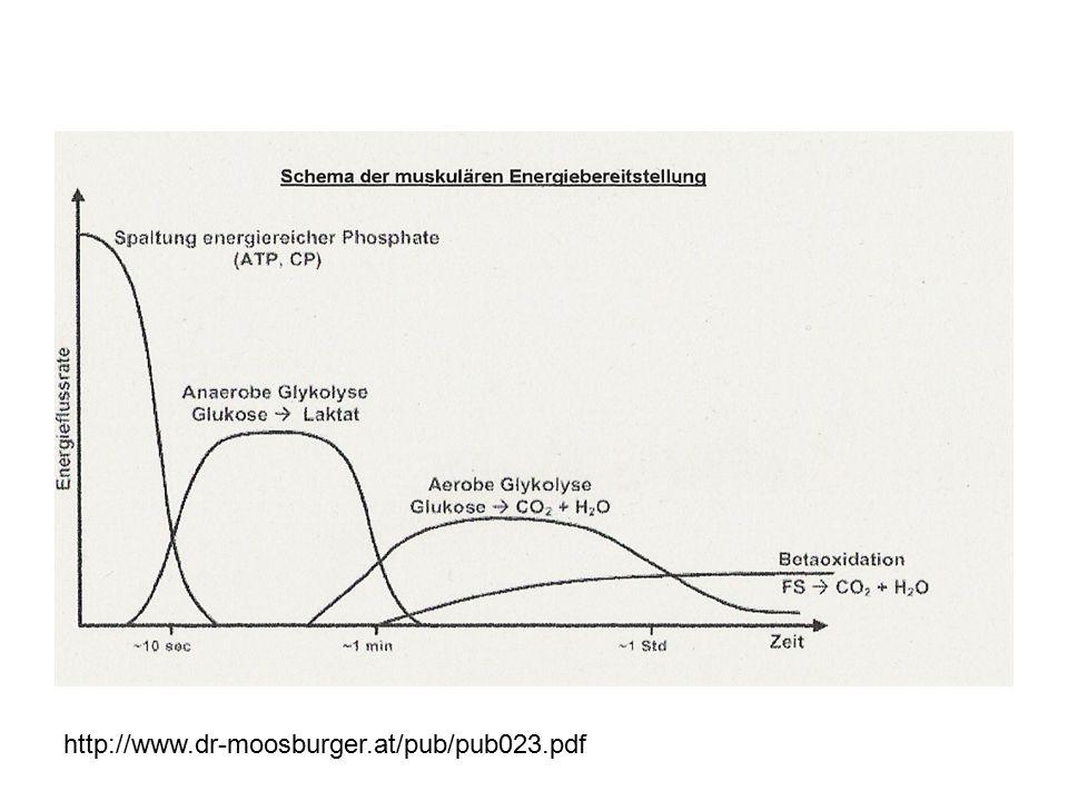http://www.dr-moosburger.at/pub/pub023.pdf