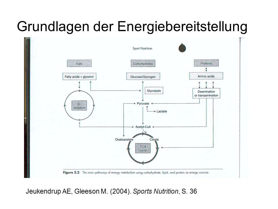 Grundlagen der Energiebereitstellung Jeukendrup AE, Gleeson M. (2004). Sports Nutrition, S. 36