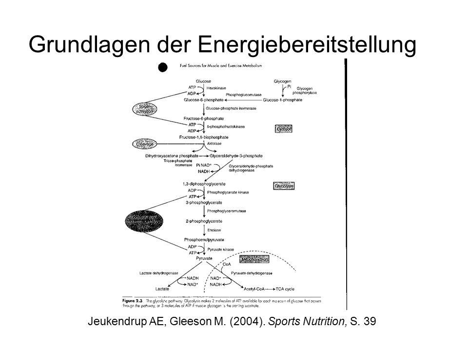Grundlagen der Energiebereitstellung Jeukendrup AE, Gleeson M. (2004). Sports Nutrition, S. 39