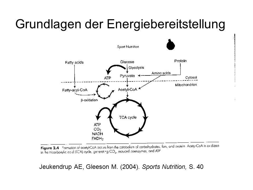 Gesamtbilanz De Marées, H. (2003). Sportphysiologie, S. 359