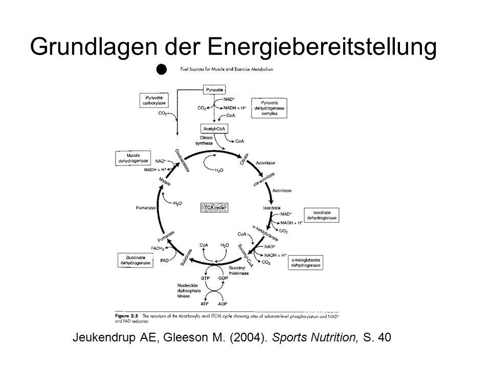 Grundlagen der Energiebereitstellung Zwei Energiespeicher: Adenosintriphosphat (ATP) + Kreatinphosphat (KP) ATP = primärer, universeller Energielieferant sowie einziger direkt anzapfbarer Energiespeicher (in allen lebenden Zellen sowie in Muskelzellen) ATP beliefert direkt die Energie benötigenden Reaktionen  Voraussetzung für jede Art körperlicher Bewegung