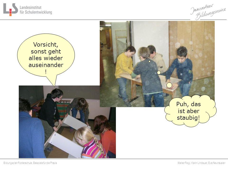 Bildungsplan Förderschule, Beispiele für die Praxis Walter Feigl, Karin Lindauer, Eva Neuhäusler Platzhalter Puh, das ist aber staubig! Vorsicht, sons