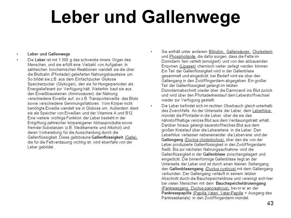 Leber und Gallenwege Die Leber ist mit 1 500 g das schwerste innere Organ des Menschen, und sie erfüllt eine Vielzahl von Aufgaben. In zahlreichen bio