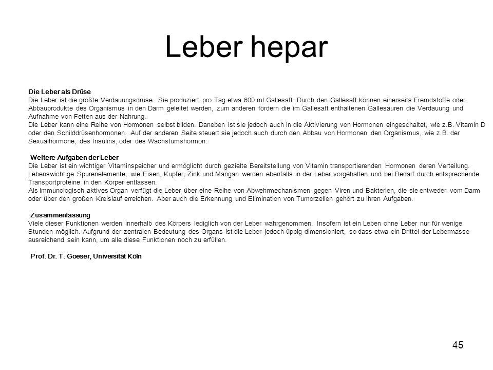 Leber hepar 45 Die Leber als Drüse Die Leber ist die größte Verdauungsdrüse. Sie produziert pro Tag etwa 600 ml Gallesaft. Durch den Gallesaft können