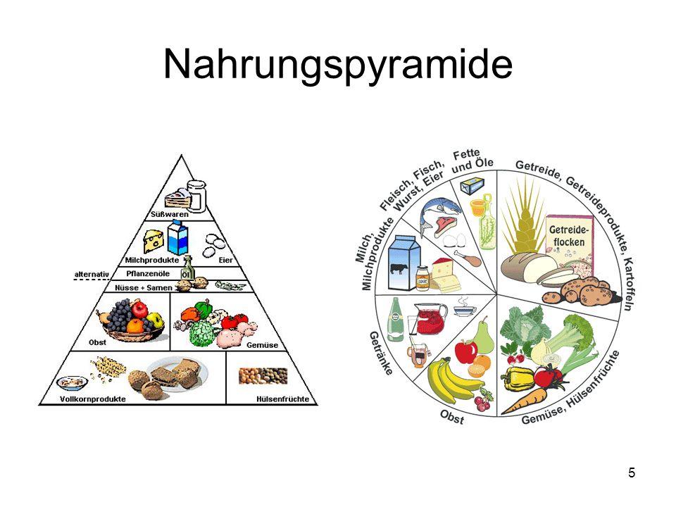 5 Nahrungspyramide