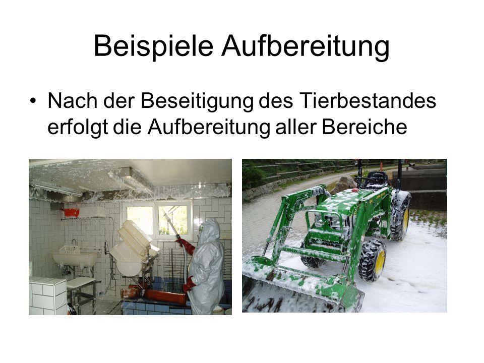 Beispiele Aufbereitung Nach der Beseitigung des Tierbestandes erfolgt die Aufbereitung aller Bereiche