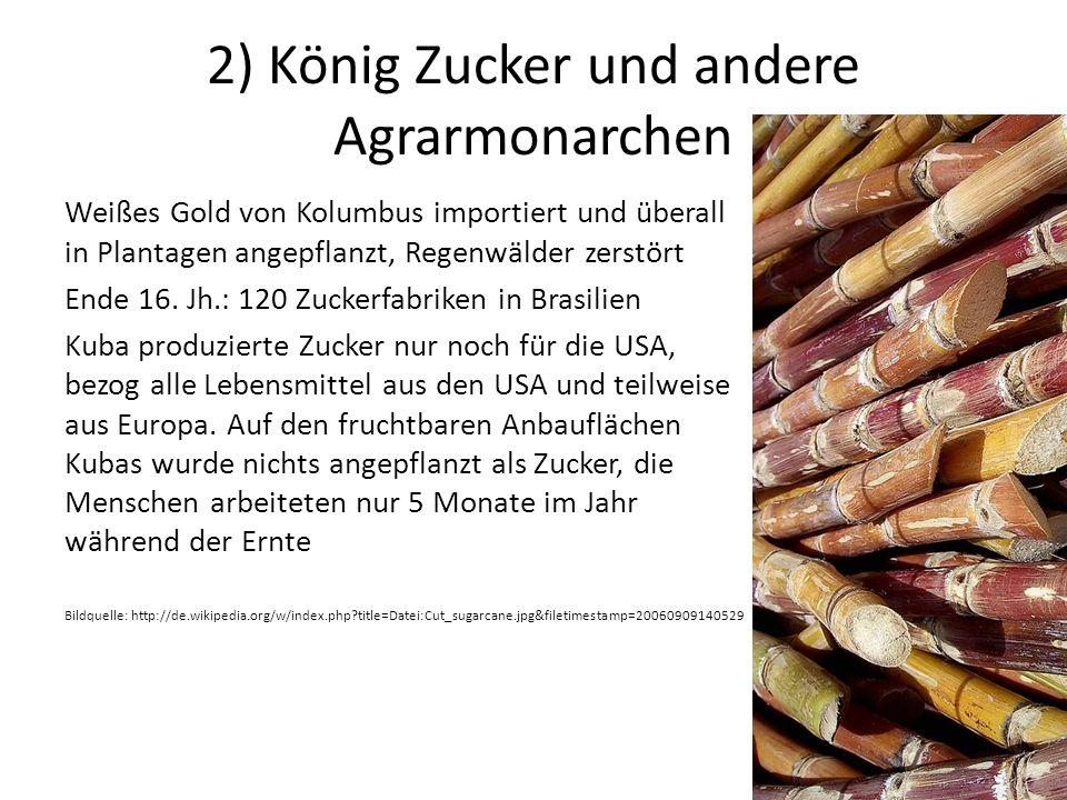 2) König Zucker und andere Agrarmonarchen Weißes Gold von Kolumbus importiert und überall in Plantagen angepflanzt, Regenwälder zerstört Ende 16.