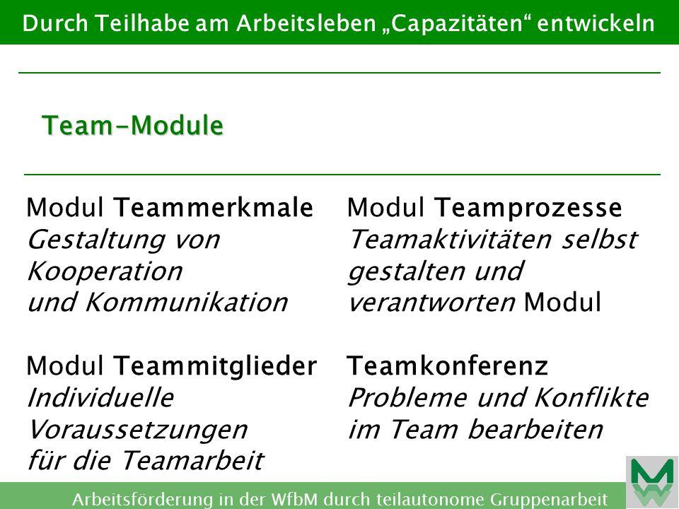 """Durch Teilhabe am Arbeitsleben """"Capazitäten entwickeln Arbeitsförderung in der WfbM durch teilautonome Gruppenarbeit Team-Module Modul Teamkultur Verhalten der Teammitglieder entwickeln Modul Teamqualifi- zierung Wissen, Können und Wollen verändern Modul Teambegleitung Arbeitsteams begleiten und beraten"""