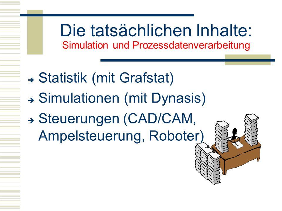 Die tatsächlichen Inhalte: Simulation und Prozessdatenverarbeitung  Statistik (mit Grafstat)  Simulationen (mit Dynasis)  Steuerungen (CAD/CAM, A