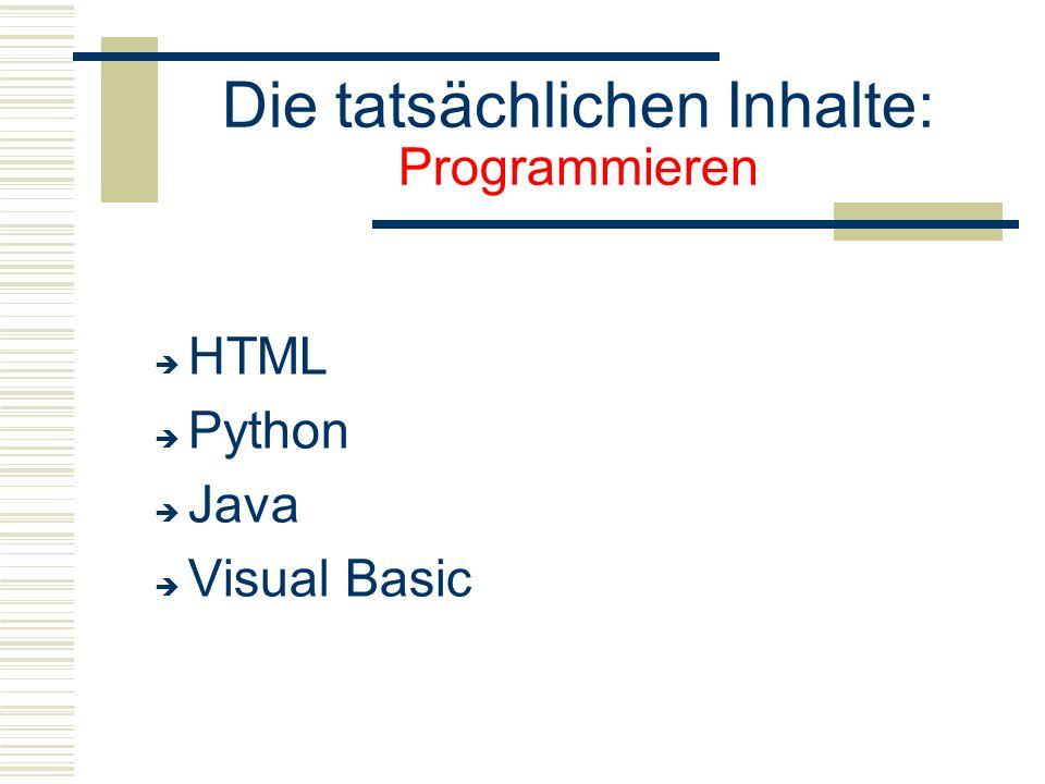 Die tatsächlichen Inhalte: Programmieren  HTML  Python  Java  Visual Basic