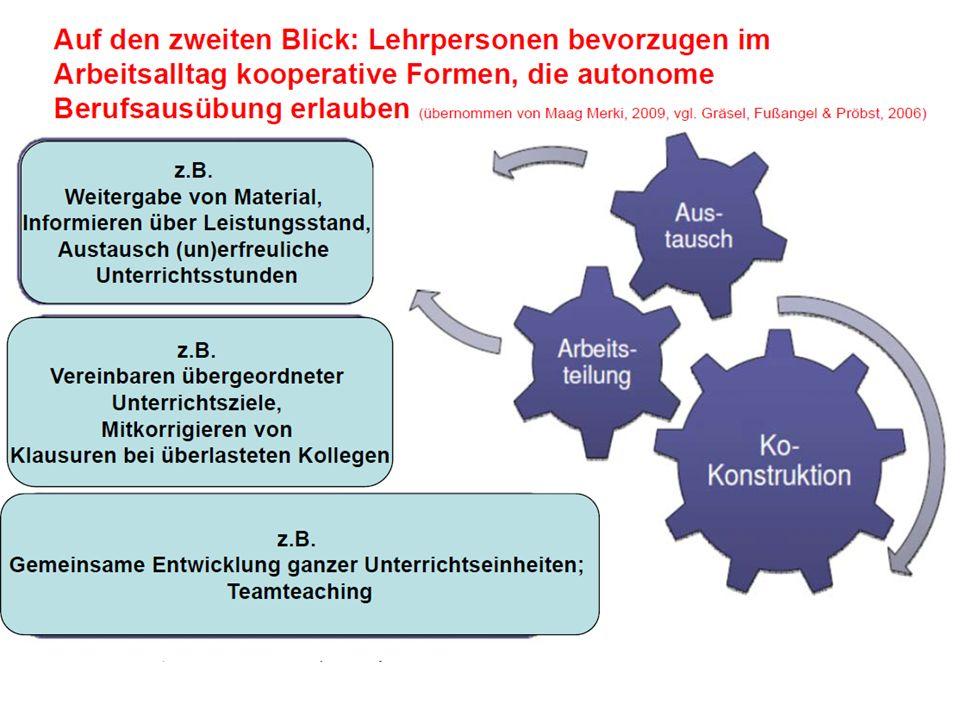 Belastung im Lehrberuf Organisationsebene Falls, dann sind es : Schwierige Zusammenarbeit / Konflikte im Team Grosse Klassen z.