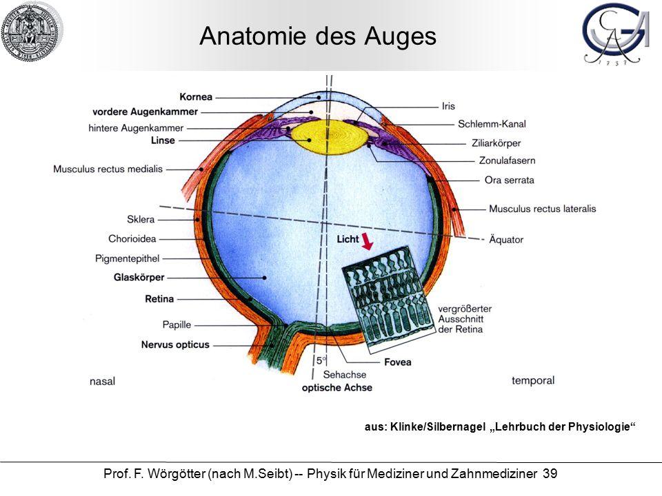 """Prof. F. Wörgötter (nach M.Seibt) -- Physik für Mediziner und Zahnmediziner 39 Anatomie des Auges aus: Klinke/Silbernagel """"Lehrbuch der Physiologie"""""""