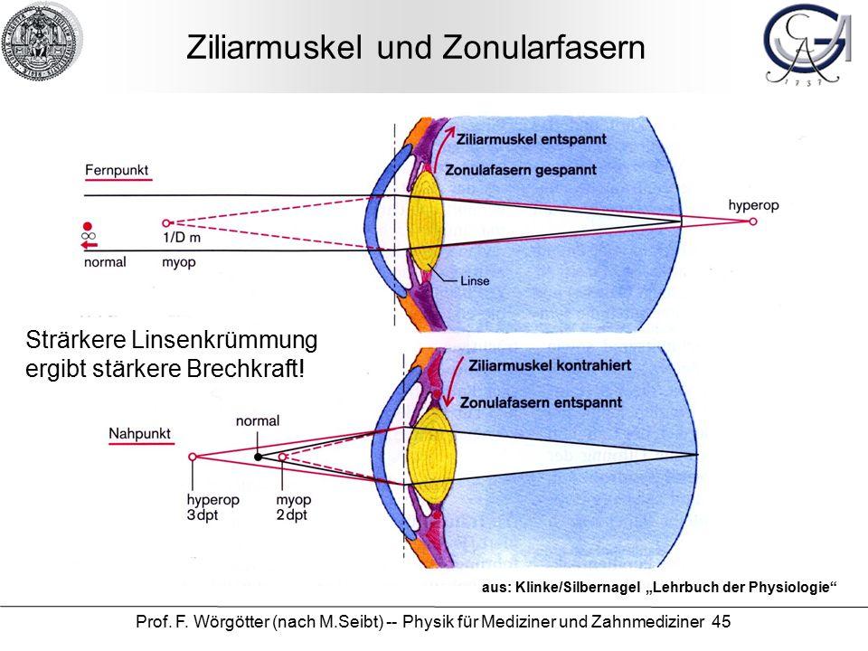 """Prof. F. Wörgötter (nach M.Seibt) -- Physik für Mediziner und Zahnmediziner 45 Ziliarmuskel und Zonularfasern aus: Klinke/Silbernagel """"Lehrbuch der Ph"""