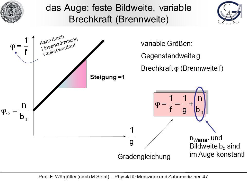 Prof. F. Wörgötter (nach M.Seibt) -- Physik für Mediziner und Zahnmediziner 47 das Auge: feste Bildweite, variable Brechkraft (Brennweite) variable Gr