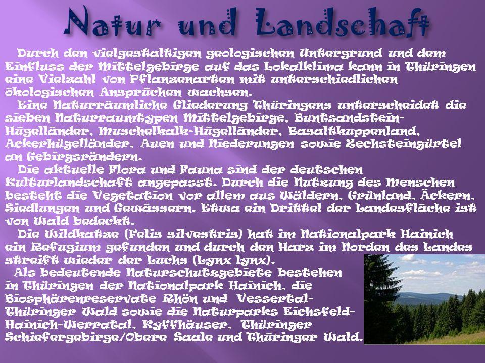 Der überwiegende Teil der 2,3 Millionen Einwohner Thüringens sind ethnische Deutsche.