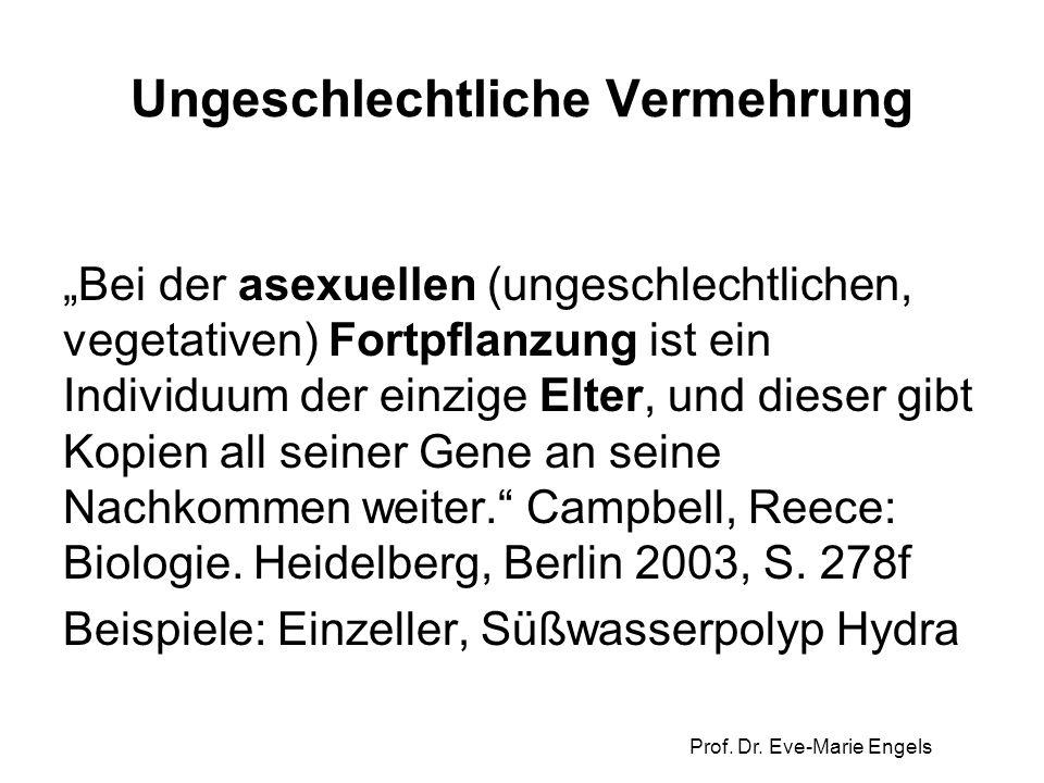 """Prof. Dr. Eve-Marie Engels Ungeschlechtliche Vermehrung """"Bei der asexuellen (ungeschlechtlichen, vegetativen) Fortpflanzung ist ein Individuum der ein"""