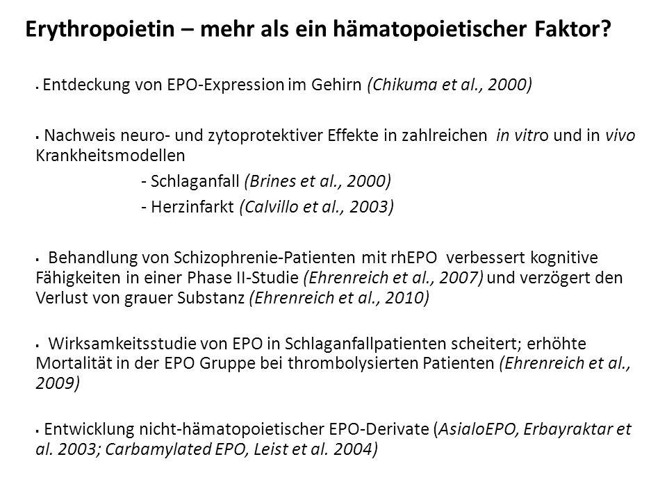 Entdeckung endogener EPO-Spleißvarianten im Gehirn und in der Niere der Maus und des Menschen mEPOmS Mausgehirn 650 bp 500 bp PCR Klon EPO PCR 650 bp 500 bp EPO-PCR humane Niere EPO wt (Maus: 579 bp, Human: 582 bp) gu ag Exon 1 2 4 5 Exon 1 2 3 4' 5 hS3 (495 bp) hS4 (486 bp) ag Exon 1 2 3 5 mS (399 bp) I.