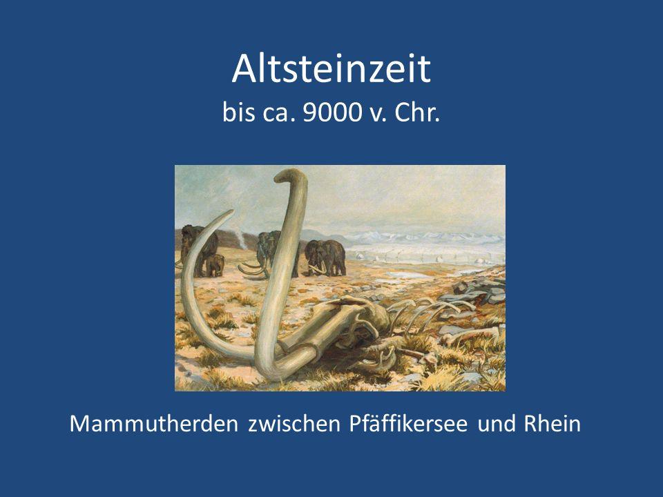 Altsteinzeit bis ca. 9000 v. Chr. Mammutherden zwischen Pfäffikersee und Rhein