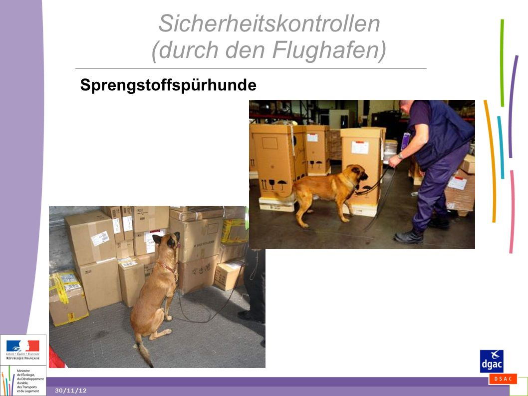 20 20 30/11/12 Sicherheitskontrollen (durch den Flughafen) Sprengstoffspürhunde
