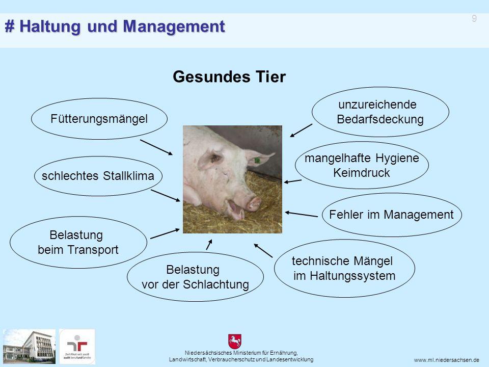 Niedersächsisches Ministerium für Ernährung, Landwirtschaft, Verbraucherschutz und Landesentwicklung www.ml.niedersachsen.de Gute Zusammenarbeit von Tierhalter und Tierarzt ist entscheidend für den guten Gesundheitsstatus des Tierbestandes = Tiergesundheit 10 # Therapie