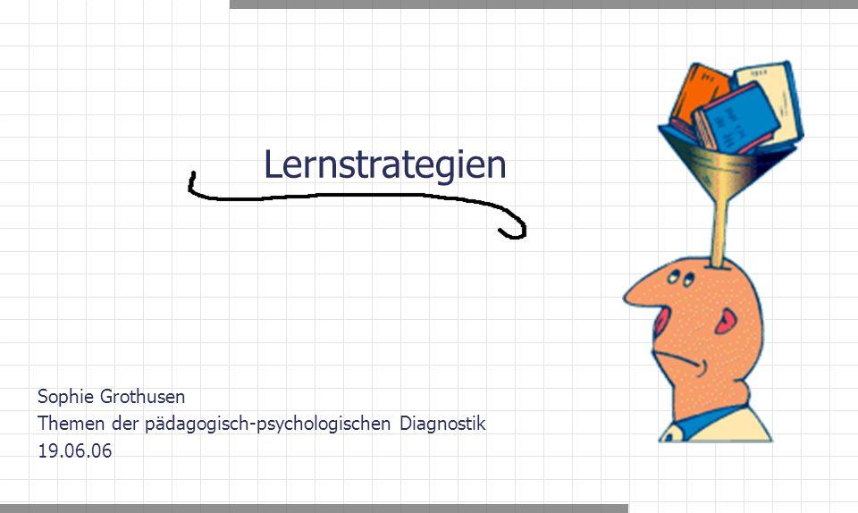Sophie Grothusen Themen der pädagogisch-psychologischen Diagnostik 19.06.06 Lernstrategien